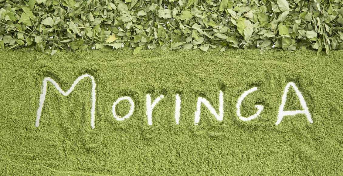 Moringa oleifera : tout savoir sur ce super aliment!