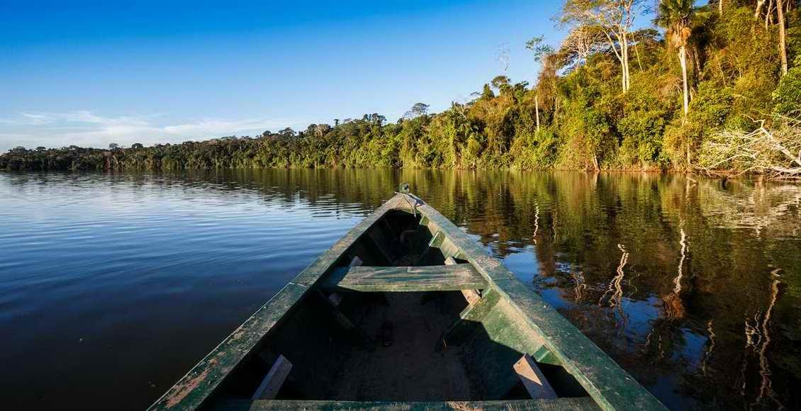 Guarana, corps et forme : les vertus de ce super aliment et comment l'utiliser